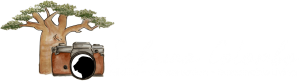 Sabrina Colombo Photography – Wildlife Photographer and Conservationist